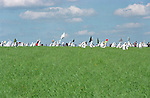 Anti GM protesters  destroy a field of test  GM rape seed, Watlington, Oxon