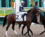 Feb 2011:  Demarcation and Anna Napravnik (2) before the Mineshaft handicap at the Fairgrounds in New Orleans, Louisiana.