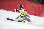 17th March 2018, Àvet Slope, Soldeu, Andorra; FIS Alpine Ski European Cup, Slalom Ladies Finals; #18 BLOMQVIST Lisa from SWE during the Slalom Final