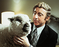 Everything You Always Wanted to Know About Sex * But Were Afraid to Ask (1972) <br /> Gene Wilder<br /> *Filmstill - Editorial Use Only*<br /> CAP/MFS<br /> Image supplied by Capital Pictures
