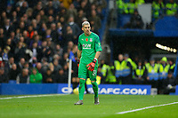 9th November 2019; Stamford Bridge, London, England; English Premier League Football, Chelsea versus Crystal Palace; Goalkeeper Vicente Guaita of Crystal Palace - Strictly Editorial Use Only. No use with unauthorized audio, video, data, fixture lists, club/league logos or 'live' services. Online in-match use limited to 120 images, no video emulation. No use in betting, games or single club/league/player publications