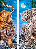 Kayomi, REALISTIC ANIMALS, paintings, tiger, YellowTigerVsWhiteTiger_M, USKH175,#A# realistische Tiere, realista, illustrations, pinturas