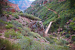 A bridge on the North Kaibab Trail into Grand Canyon