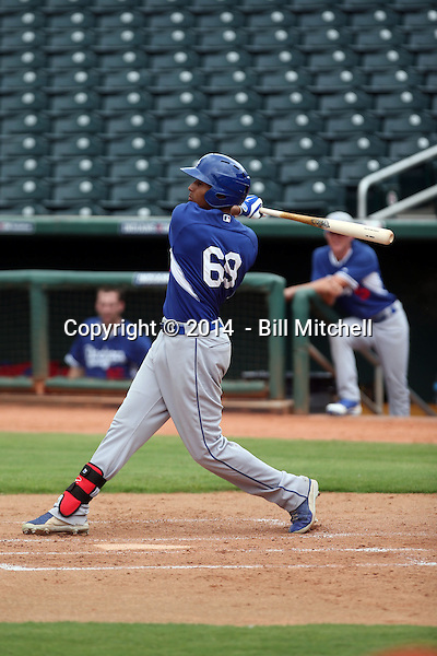 James Baldwin - 2014 AIL AIL Dodgers (Bill Mitchell)