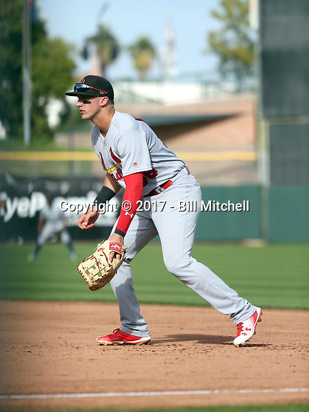 Andrew Knizner - Surprise Saguaros - 2017 Arizona Fall League (Bill Mitchell)