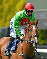 Tone The Barone ridden by Harry Bentley goes down to the start of The AJN Steelstock / Pam Bruford Memorial Handicap during Horse Racing at Salisbury Racecourse on 9th August 2020