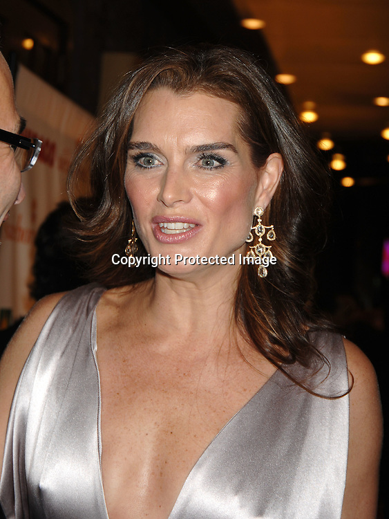 "Brooke Shields..arriving at The 10th Anniversary of ""Chicago"" on November 14, 2006 at The Ambassador Theatre in New York. ..Photos by Robin Platzer, Twin Images"