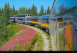 Denali Star and Fireweed, Alaska Railroad, Alaska
