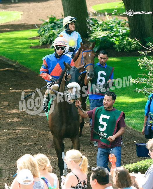 Who's In Town before The Dashing Beauty Stakes at Delaware Park on 7/11/15