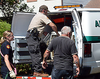 Animal control personnel load up after a fire destroyed a home Monday August 29, 2016 in Northampton, Pennsylvania.  A family escaped an afternoon house fire, but not all of the approximately 15 pets in the home on East Ridge Circle made it out alive.  (Photo by William Thomas Cain)