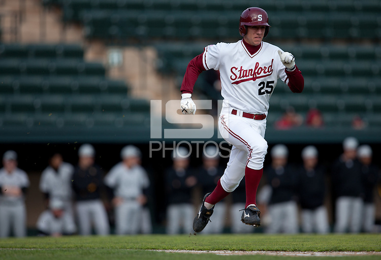 STANFORD, CA - March 25, 2011: Stephen Piscotty of Stanford baseball outruns a grounder during Stanford's game against Long Beach State at Sunken Diamond. Stanford lost 6-3.