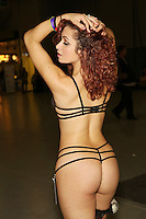 Stacey at Exxxotica, Edison Convention Center, NJ, Saturday November 8, 2014.