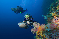 Divers (MR) on underwater scooters and soft coral in Palau, Micronesia.