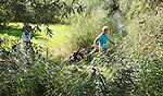 WERVERSHOOF - Tussen het riet door naar de volgende hole. Golfbaan de Vlietlanden. COPYRIGHT KOEN SUYK