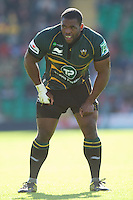 Brian Mujati of Northampton Saints catches his breath during the Heineken Cup match between Northampton Saints and Glasgow Warriors  at Franklin's Gardens on Sunday 14th October 2012 (Photo by Rob Munro)