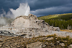 Geothermal steam and water venting out of Castle Geyser, Upper Geyser Basin, Yellowstone National Park, Wyoming`
