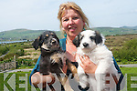 Shannon Behr who set up Animal Rescue South Kerry for abandoned or neglected animals to help find new homes for them.  Pictured with some of a litter of puppies 'Beau' and 'Balou'  born to a rescue dog.