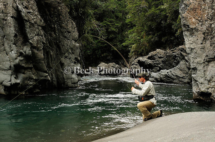 Nicholas Robertson fly fishing the Hope River on the South Island of New Zealand