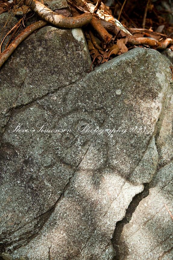 Petroglyph to the left of the waterfall<br /> Reef Bay Petroglyphs<br /> Virgin Islands National Park<br /> St. John, U.S. Virgin Islands