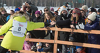 Musher Newton Marshall high fives fans as he races down the start chute. (Stephen Nowers photo)