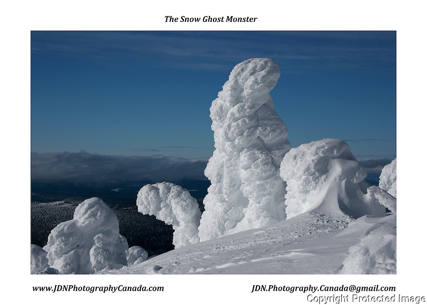 Snow Ghosts - Okanagan Valley, British Columbia