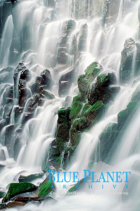 Ramona Falls, Mount Hood Wilderness Area, Oregon, USA