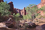 Utah, Coyote Gulch, Grand Gulch Primitive Area, Southwest USA, Bureau of Land Management, (BLM) Glen Canyon National Recreation Area, Red rock formations, hiker in solitude, Maggie Coon, relesed,.