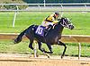 Tiz Away winning at Delaware Park on 10/12/16