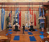 SWT- Fairmont Princess Aerial Hammock Yoga & Lawn Yoga, Scottsdale AZ 5 15