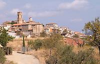 View of Gratallops from the winery. Clos de l'Obac, Costers del Siurana, Gratallops, Priorato, Catalonia, Spain.