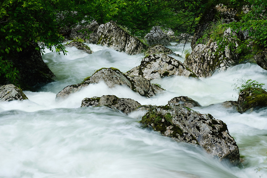 River Lepenjica, cascades, rocks in water<br /> Triglav National Park, Slovenia<br /> June 2009