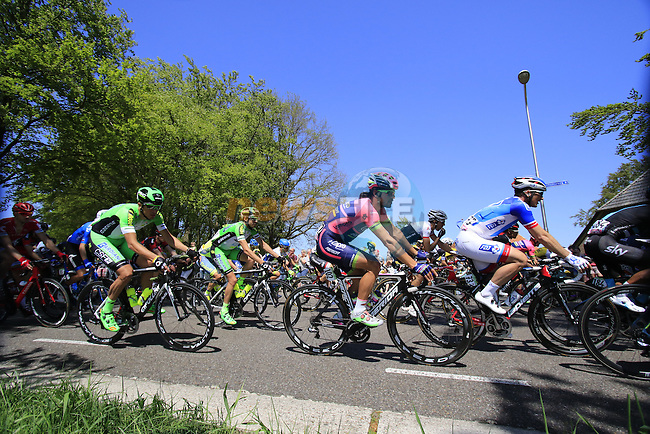 The peloton, including Roberto Ferrari (ITA) Lampre-Merida, in action during Stage 3 of the 2016 Giro d'Italia running 190km from Nijmegen to Arnhem, The Nethrerlands. 8th May 2016.<br /> Picture: Eoin Clarke | Newsfile<br /> <br /> <br /> All photos usage must carry mandatory copyright credit (&copy; Newsfile | Eoin Clarke)
