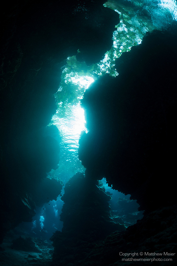 Marovo Lagoon, Solomon Islands; sunlight streaming into an underwater cavern with overhanging trees visible overhead