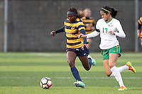 EUGENE, OR - October 15, 2016: Cal Bears Women's Soccer team vs. the Oregon Ducks at Papé Field. Final score, Cal Bears 2, Oregon Ducks 0.