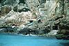Boat Coves in Cala Dei&agrave;<br /> <br /> Cuevas guardabotes en la Cala Dei&agrave;<br /> <br /> Bootsh&ouml;hlen in der Cala Deia<br /> <br /> 3686 x 2456 px<br /> 150 dpi: 62,42 x 41,59 cm<br /> 300 dpi: 31,21 x 20,79 cm<br /> Original: 35 mm slide transparancy
