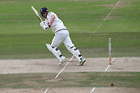 Tom Westley in batting action for Essex during Nottinghamshire CCC vs Essex CCC, Specsavers County Championship Division 1 Cricket at Trent Bridge on 1st July 2019