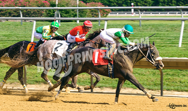 Yo Soy El Lobo winning at Delaware Park on 9/2/16