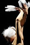 LE CYGNE<br /> Choregraphie: DREAERS Natti<br /> Compagnie Die Donau<br /> Avec : Andrea Sitter<br /> Cadre : La danse, l&rsquo;humour, le burlesque<br /> Lieu: Centre National de la Danse<br /> Ville : Pantin<br /> le 28/04/2011<br /> &copy; Laurent Paillier / photosdedanse.com<br /> All rights reserved