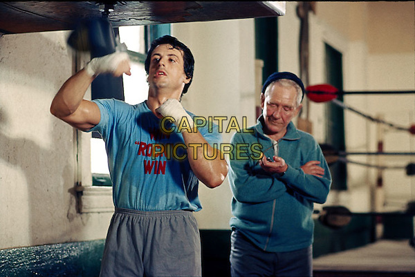 Sylvester Stallone .in Rocky .*Filmstill - Editorial Use Only*.CAP/PLF.Supplied by Capital Pictures.