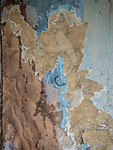 Water stains on wallpaper, Ghost town of Bannock, Montana, first territorial capital of the region