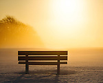 Golden Light Bench at Timberpoint Country Club in Great River