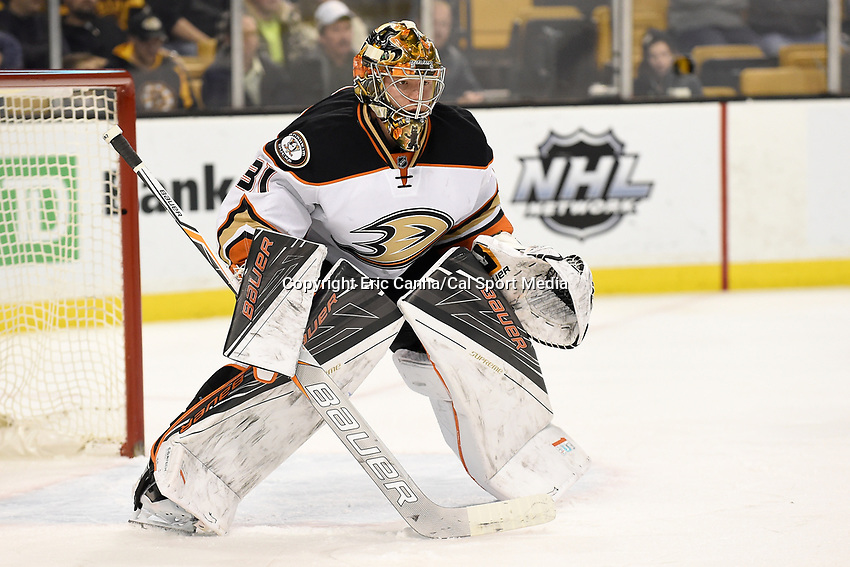 Tuesday, January 26, 2016: Anaheim Ducks goalie Frederik Andersen (31) readies for a face off during the National Hockey League game between the Anaheim Ducks and the Boston Bruins, held at TD Garden, in Boston, Massachusetts. Anaheim defeats Boston 6-2. Anaheim defeats Boston 6-2.  Eric Canha/CSM
