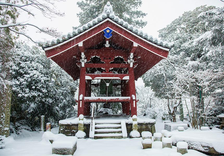 Tokyo temple in Snow - heaviest in 46 years