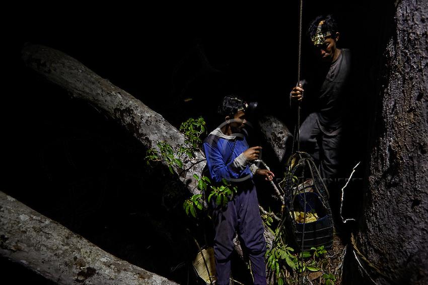 Hamsah and his brother Boni regularly take breaks during the three or four hours that the harvests last. ///Hamsah et son frère Boni font régulièrement des pauses pendant les trois quatre heures que dure la récolte.