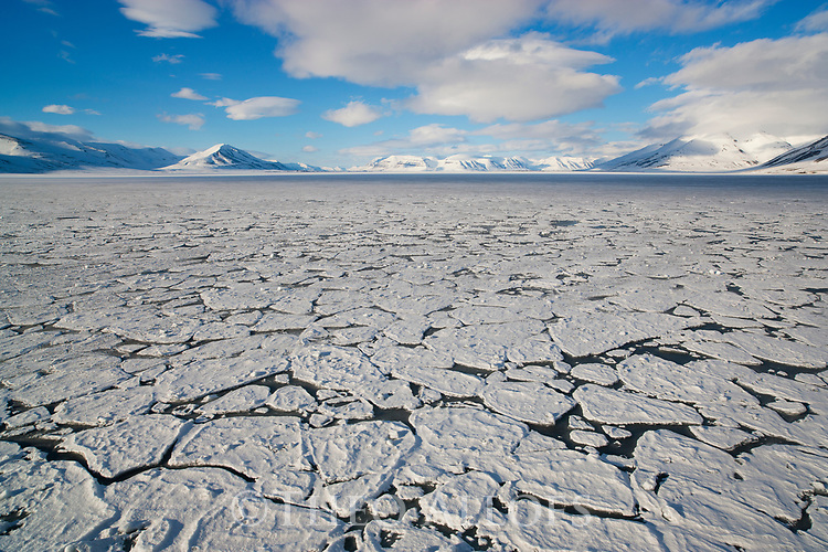 Norway, Svalbard, ice breaking up in fjord in late spring