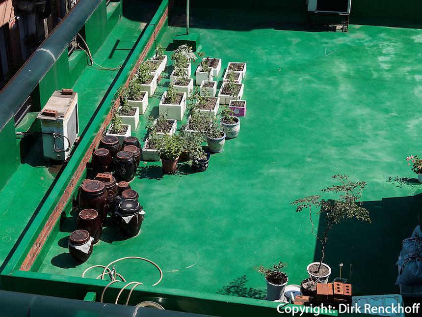 Dachgarten mit Blumen und Kimchi-T&ouml;pfen in Seoul, S&uuml;dkorea, Asien<br /> roof garden with plants and Kimchi pottery  in Seoul, South Korea, Asia