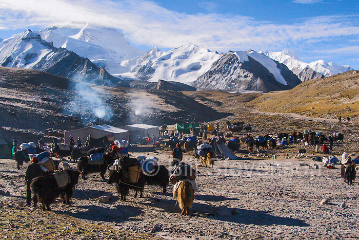 Intermediate Camp and Cho Oyu in the Himalaya mountains of Tibet in China.