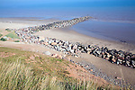 Rock armour groynes at Mappleton, Yorkshire, England