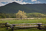 Open agricultural fields in Cades Cove, Great Smoky Mountains National Park, TN, USA