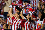 Club Atletico de Madrid fans cheer on their team during their La Liga match between Club Atletico de Madrid and Malaga CF at the Estadio Vicente Calderón on 29 October 2016 in Madrid, Spain. Photo by Diego Gonzalez Souto / Power Sport Images
